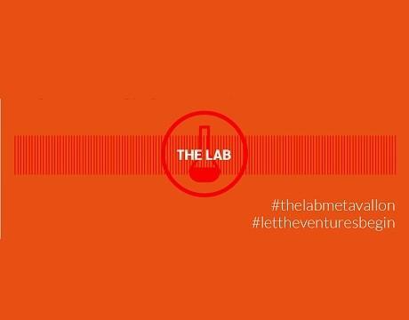 metavallon the lab 460400
