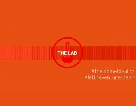 metavallon the lab 464400