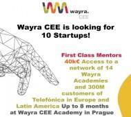 wayra academy cee 460400