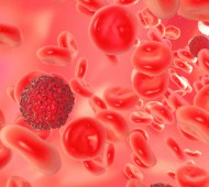 Cancer_Blood_14501195_460x400_01