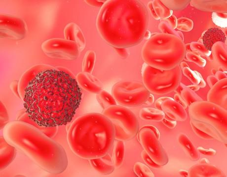 Cancer_Blood_14501195_460x400_01