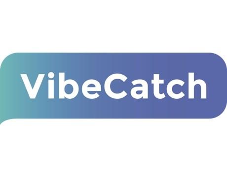 vibecatch_logo_460x400