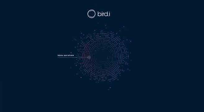 birdi_logo_657400
